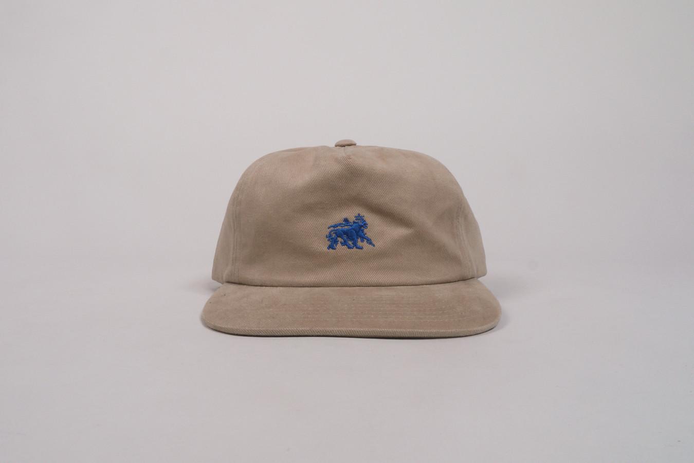 1c985ce4e61 Home · Brands  Lion Strapback Cap
